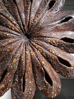 Flower Remnant (detail)
