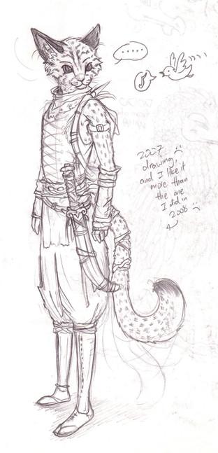 Cheetah Ninja