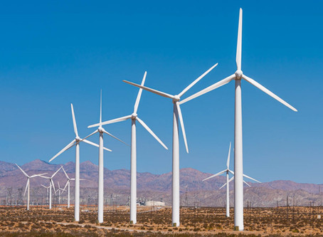 Palm Springs Family Activity Windmill Tour