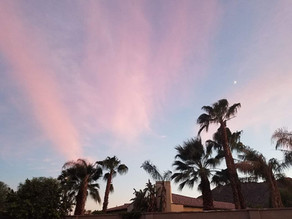 Resources for your Visit to Palm Springs