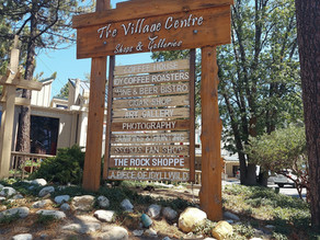 5 Things to See on a Trip To Idyllwild