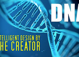 dna-intelligent-design-by-the-cr.jpg