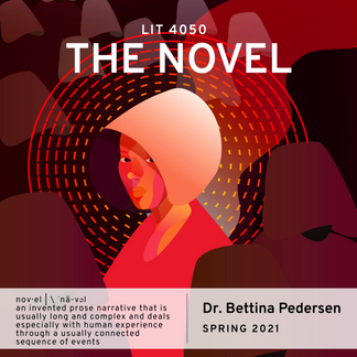 LIT 4050 The Novel