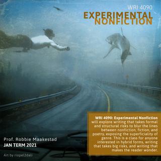 WRI 4090, Experimental Nonfiction