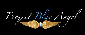 Project Blue Angel Logo copy.jpg