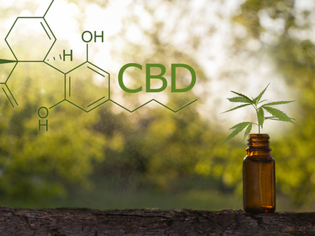 The CBD - What is it, and what does it do?