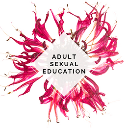 Adult Sex Ed.png