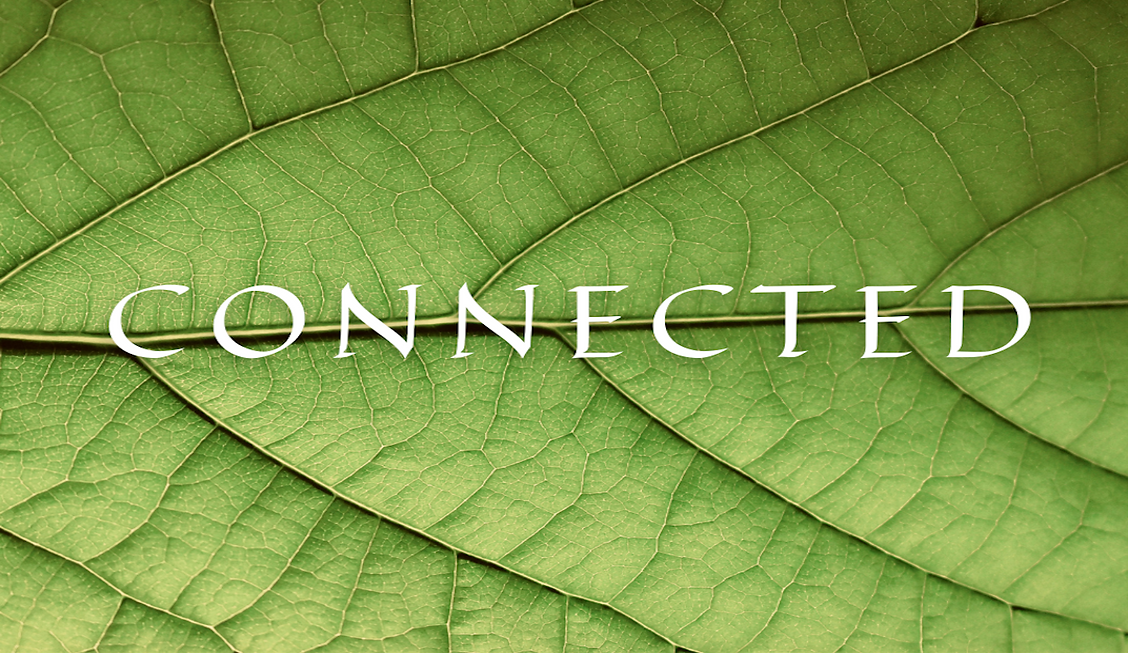 CONNECTED (4).png