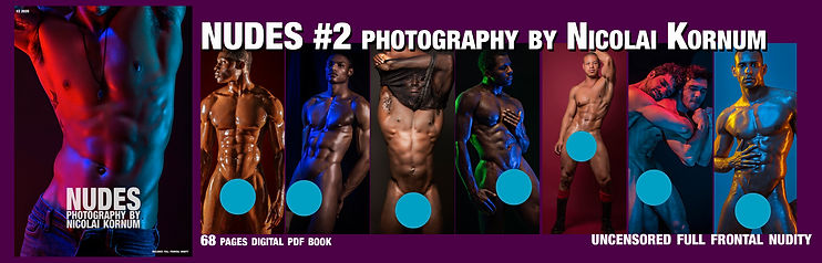 NUDES 2 cover banner.jpg