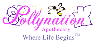 Pollynation Logo