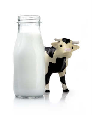 Milk and Cow