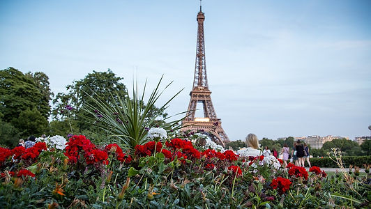 paris-2684609_960_720.jpg