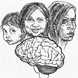 brain --- stages