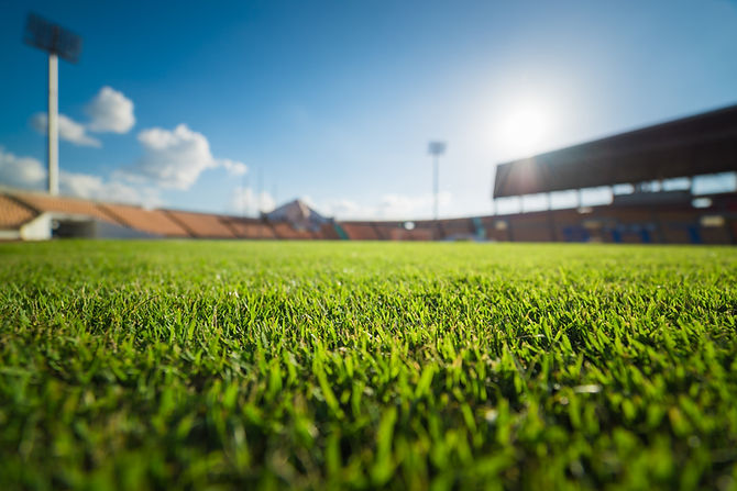 green-grass-soccer-stadium.jpg