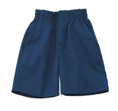 Navy Pull Up Shorts (Toddlers)