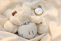 still_life_teddy_bear_sch_fchen_lying_sl