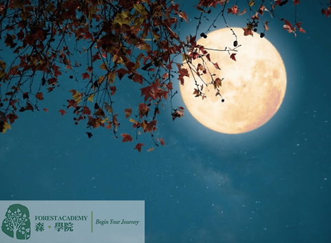 解夢, 催眠治療課程, Forest Academy 森 · 學院 -image04