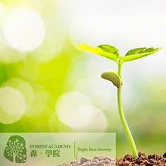 身心靈課程, 身心靈健康課程, Forest Academy -image08