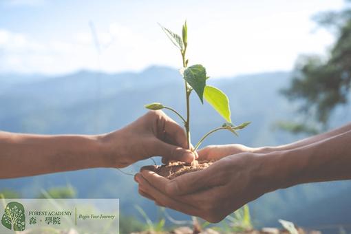 企業培訓, 企業社會責任活動, Forest Academy-image09