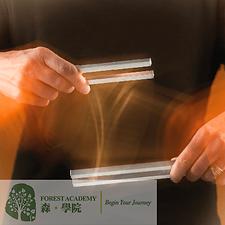 音叉治療, 音叉治療課程, Forest Academy 森 · 學院 -image11