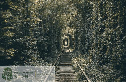 解夢, 催眠治療課程, Forest Academy 森 · 學院 -image01