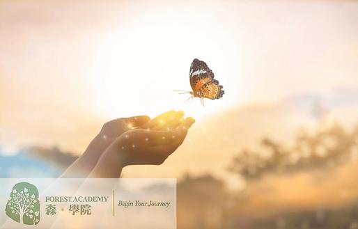 解夢, 催眠治療課程, Forest Academy 森 · 學院 -image06