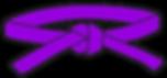 belt_purple_small.png