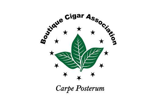 BCA Press Release Logo-01.jpg