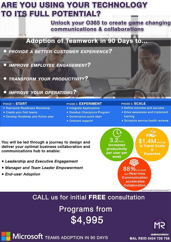 Teamwork Adoption Program Flyer.jpg
