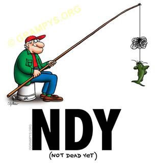NDY-pole-fishing-640.jpg