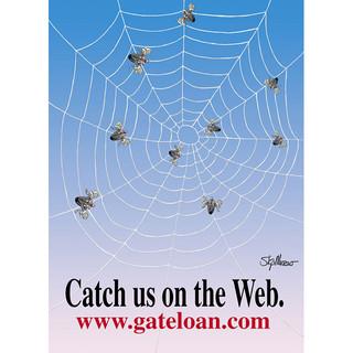 big-spider-web-postcard-640.jpg