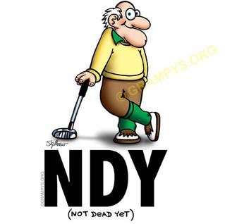 NDY-golf-leaner-640.jpg