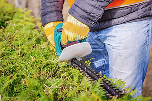 Frederick, MD Quality and Affordable Lawncare and Landscape Services
