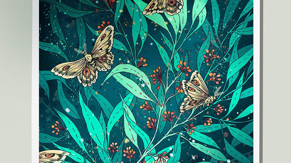 Eucalyptus and moths