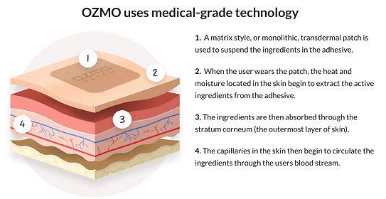 Ozmo-Explanation.jpg