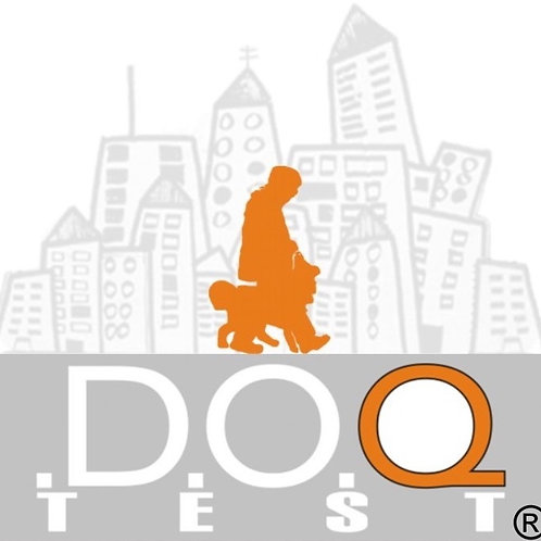 D.O.Q.-Test 2.0