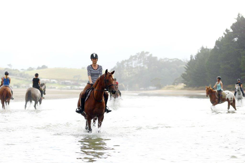 toni and horse.jpg
