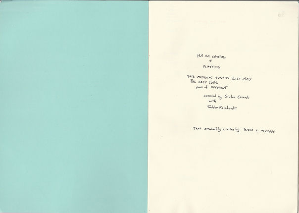 india murphy writing response to ha ha crystal by chris fite wassilak for grey cat tate modern curated by giulia civardi be 113