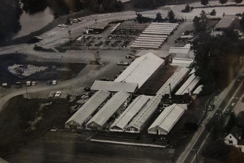 Russell's Garden Center 1980's.JPG