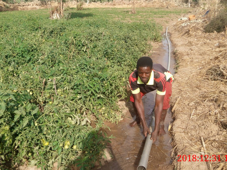 Des projets financés par SOS FAIM Belgique dans le cadre du programme AGRI+