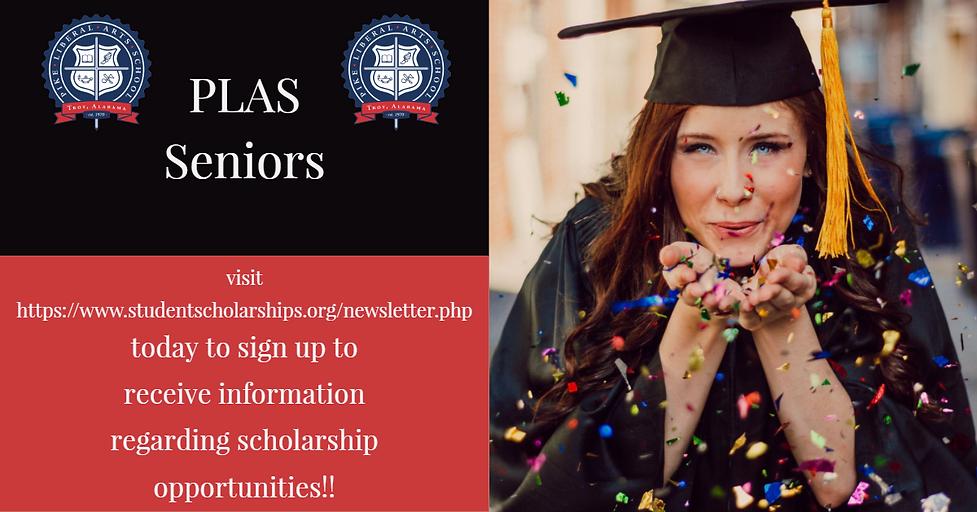 Scholarship Website.png
