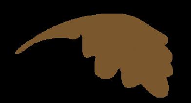 feuillebrune.png