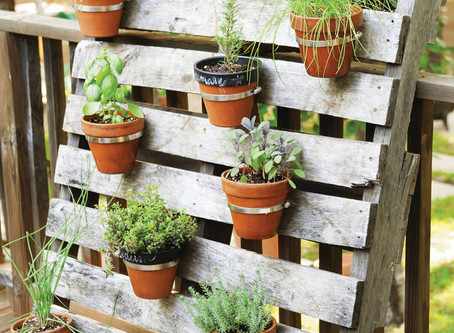 Making the most of outdoor space