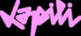 logo lapili.png