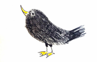 Raven ワタリガラス