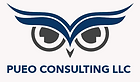 Pueo Consulting.png