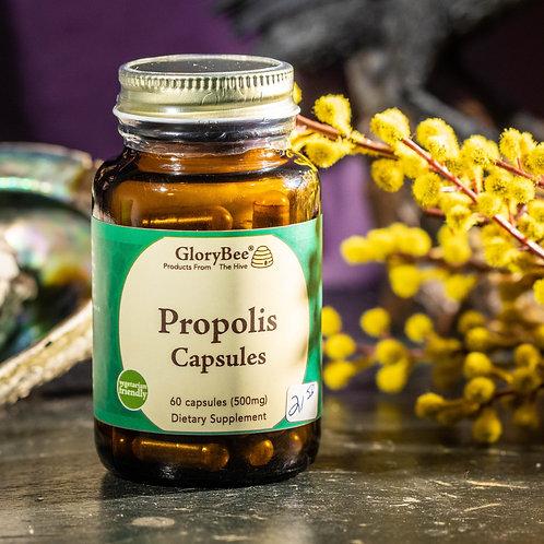GloryBee Propolis Capsules (60 count)