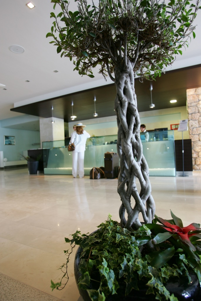 Hotel Soline Brela 35.jpg