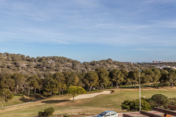 frontline golf views