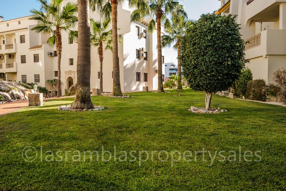 communal gardens (2)